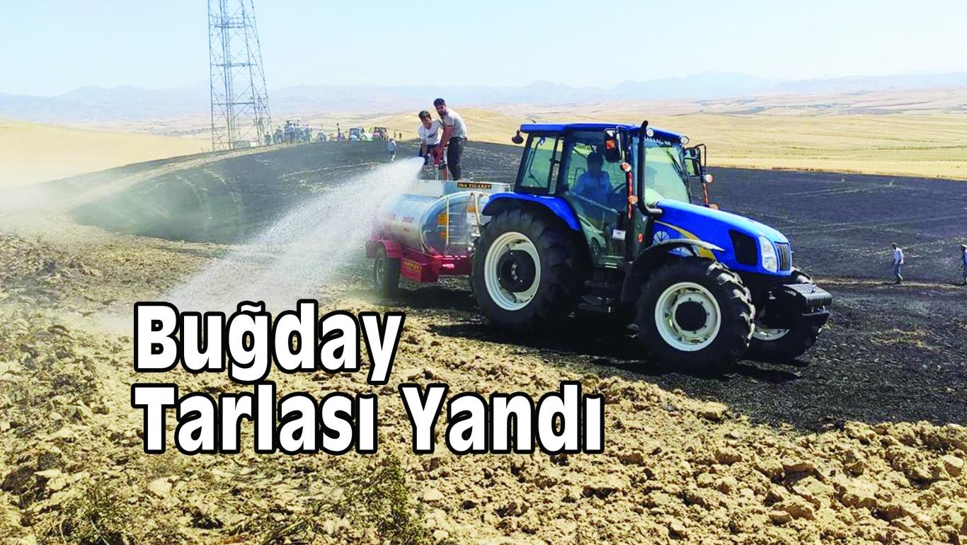 15 Dönümlük Buğday Tarlası Yandı