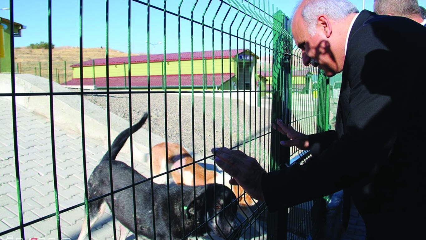 'Hayvan Polisi' Uygulaması Geliyor