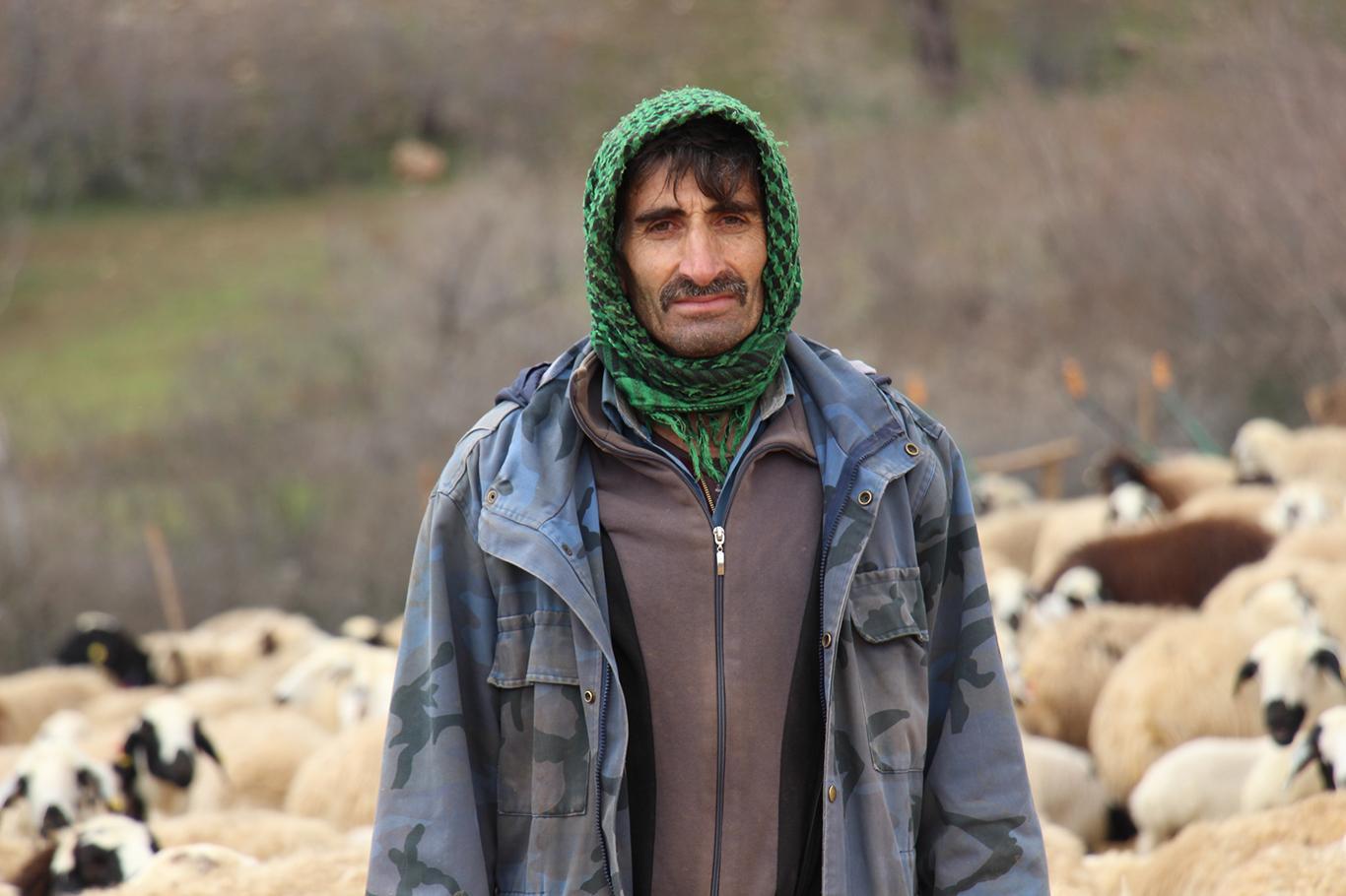 """""""Koyun Ve Kuzuların Birbirini Tanıması Allah"""