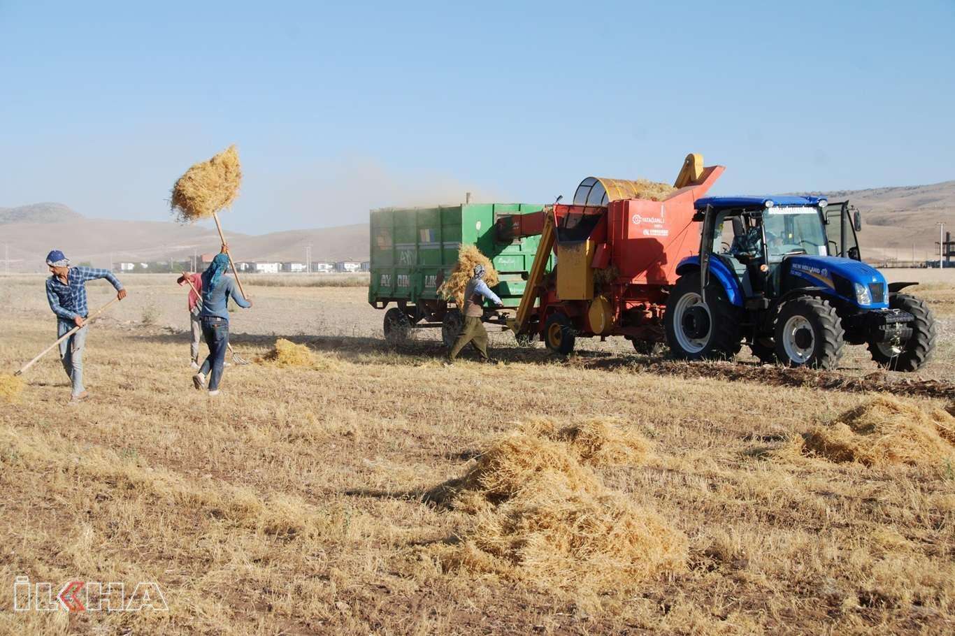 Kuraklığın vurduğu çiftçi: Sulama konusunda destek görmedik
